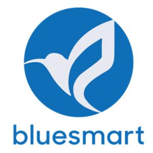 Bluesmart Solar PV Co.,ltd logo